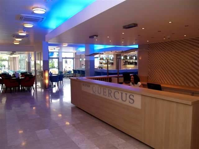 quercus006.jpg