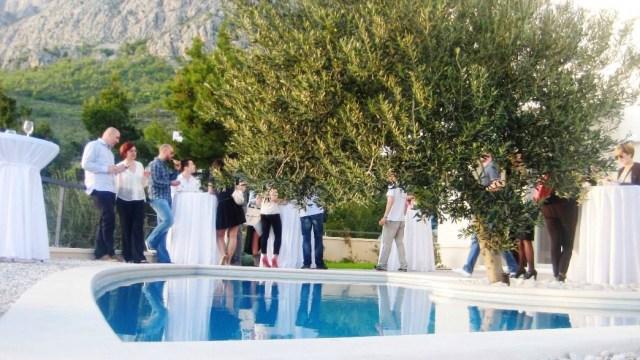 villa-lukic-party-16.jpg
