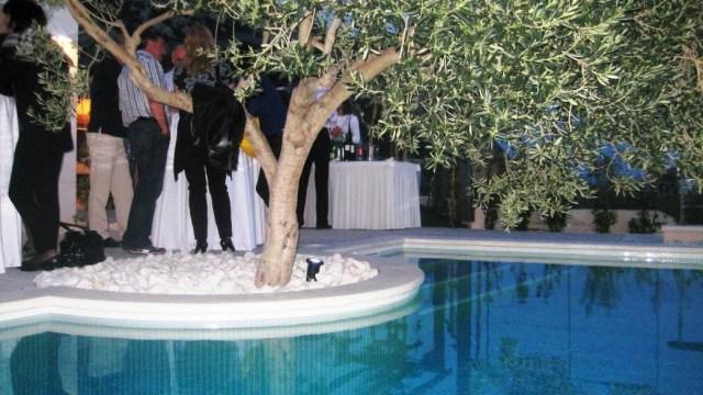 villa-lukic-party-18.jpg